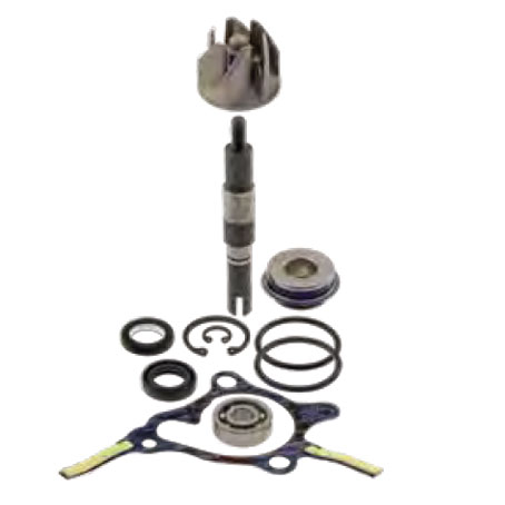 100110310 kit revisione pompa acqua honda fes foresight - jazz 250 1998-2005